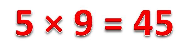 5 × 9