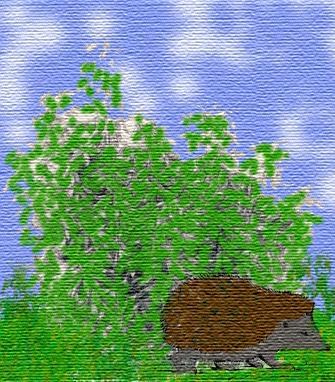 В лесу - детские стихи